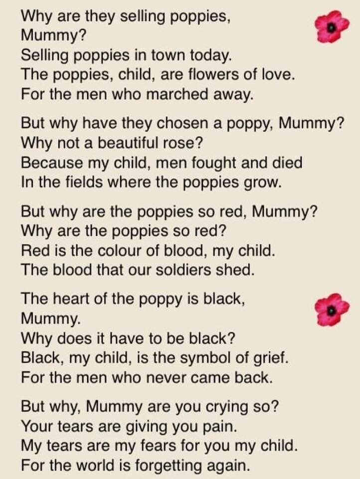 poppies and why.jpg